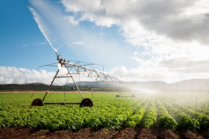 Irrigation and Climate Risks